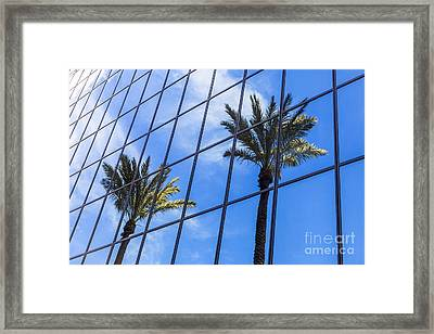 Palm Trees Reflection On Glass Office Building Framed Print