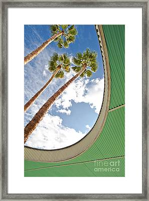 Palm Trees Through Architecture Framed Print