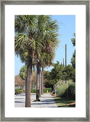 Palm Way Framed Print by Static Studios