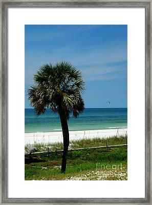 Palmetto And The Beach Framed Print