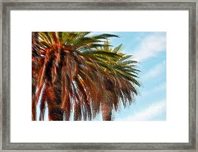 Palms A'glo Framed Print by Gwyn Newcombe
