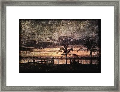 Palms And Docks Framed Print by Skip Nall