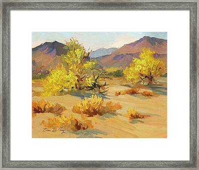 Palo Verde In Bloom Framed Print
