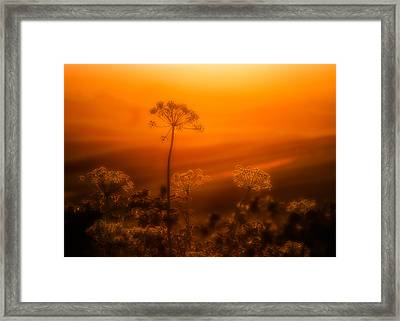 Palouse Dream Framed Print