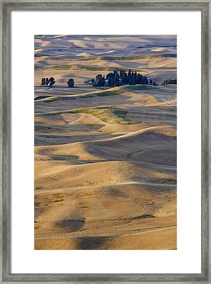Palouse Harvest Framed Print