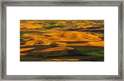 Palouse Shadow Play Framed Print by Dan Mihai