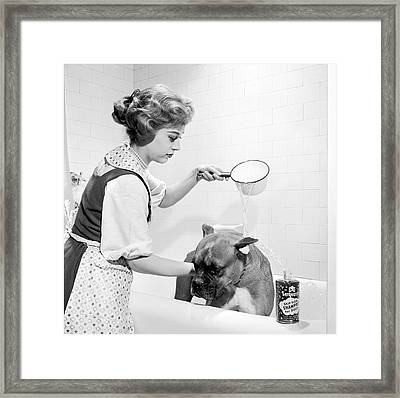Pampered Pup Framed Print by Flecknoe