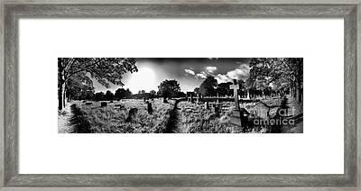 Panoramic Cemetery Bw Framed Print by Maria Tzamtzi