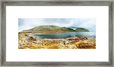 Panoramic Landscape With Penguins Framed Print by Anna Om