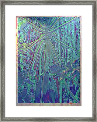 Papaya Madness Framed Print by Charles Hansen