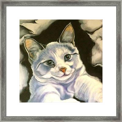 Paper Tiger Detail Framed Print by Susan A Becker
