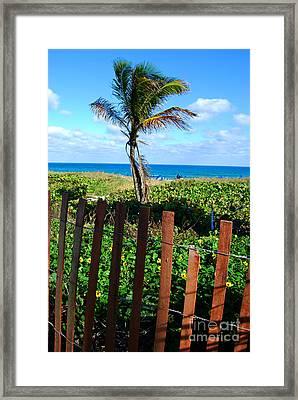 Paradise Beyond The Fence Line Framed Print by Linda Mesibov