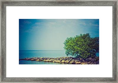 Paradise Cove Framed Print by Sara Frank