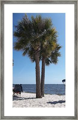 Paradise Found Framed Print by Alanna Hug-McAnnally
