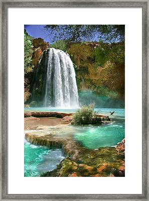 Paradise Framed Print by PMG Images