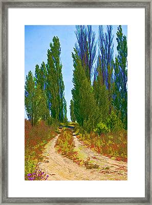 Paradise Road Framed Print