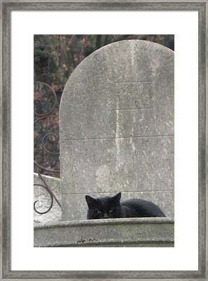 Paris Cemetery - Pere La Chaise - Black Cat On Gravestone - Le Chat Noir Framed Print by Kathy Fornal