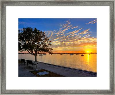 Park Bench Bay View Framed Print by Jenny Ellen Photography