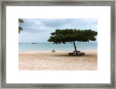 Framed Print featuring the photograph Park Bench by Tanya Tanski