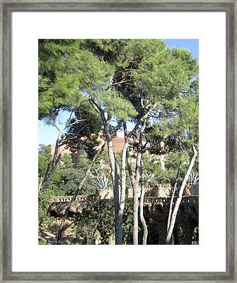 Park Guell Stone Pathway By Antoni Gaudi In Barcelona Spain Framed Print by John Shiron
