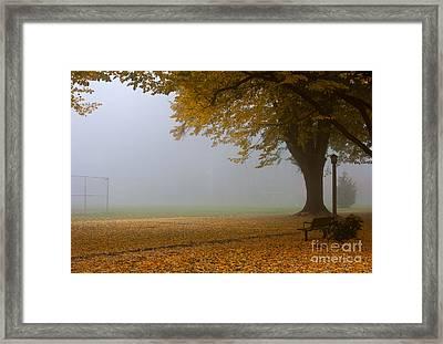 Park In Autumn Framed Print by David Buffington