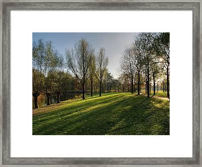 Park In Autumn Sunshine Framed Print