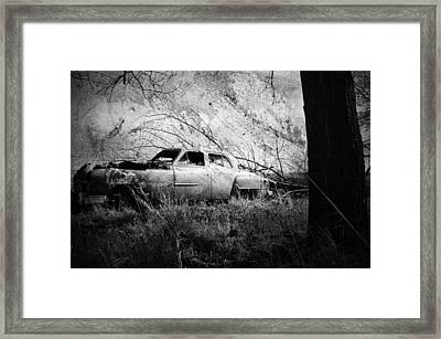 Park In The Trees  Framed Print by Empty Wall