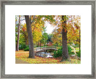 Park In Tyler Framed Print by Evgeniya Sohn Bearden