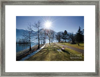 Park On The Lakefront Framed Print