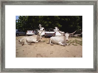 Parking Attendants Dakar Senegal Framed Print by Wayne King