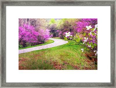 Parkway Kind Of Spring Framed Print by Darren Fisher