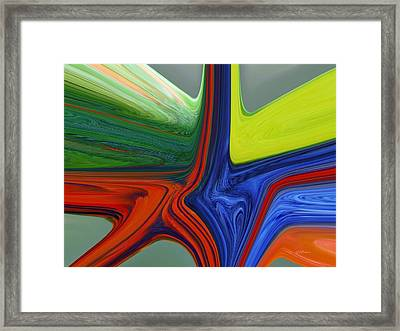 Parrot Dance Framed Print