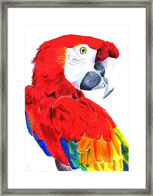 Parrot Framed Print by Helen Esdaile