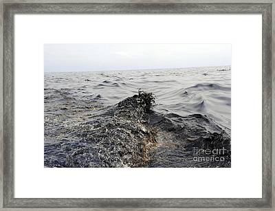Part Of An Oil Slick In The Gulf Framed Print