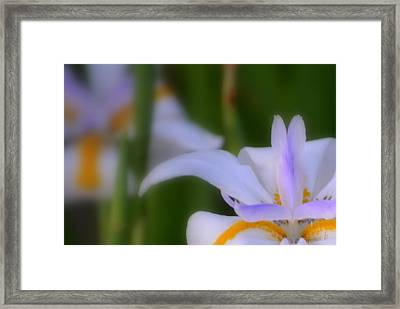 Framed Print featuring the photograph Part Of It by Rima Biswas