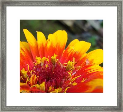 Party Pad Framed Print