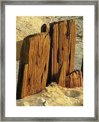 Pass The Sand Please Framed Print by Joe Jake Pratt