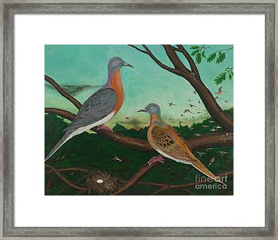 Passenger Pigeon Evening Flight Framed Print