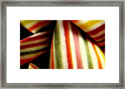 Pasta Art Framed Print by Bruce Carpenter