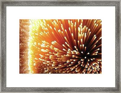 Pasta Illumination Framed Print