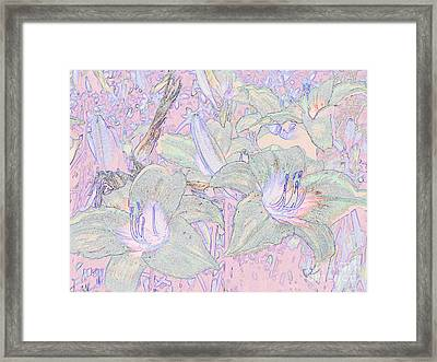 Pastel Lillies Framed Print
