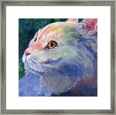 Pastel Persian Framed Print by Sherry Shipley