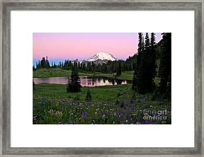 Pastel Skies Over Rainier Framed Print by Marcus Angeline