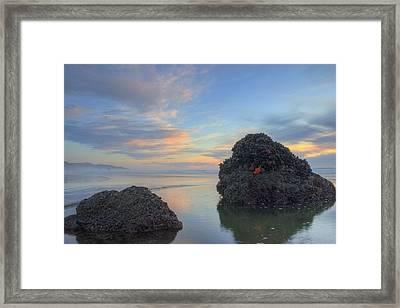 Pastel Tidepool Framed Print