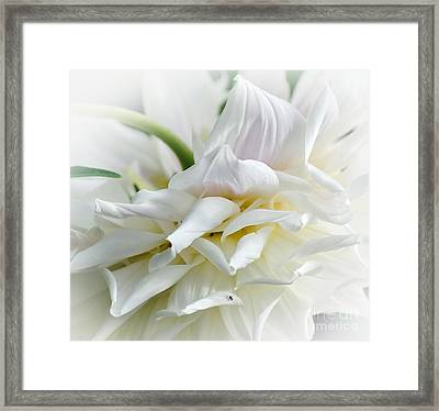 Pastels And Curls Framed Print