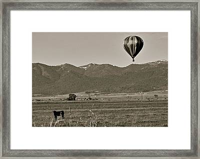 Framed Print featuring the photograph Pastoral Surprise by Eric Tressler