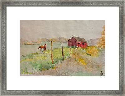 Pasture In Lagrangeville Framed Print
