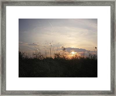 Pasture Sunset Framed Print