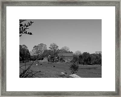 Pastures And Farm Framed Print by Kim Galluzzo Wozniak