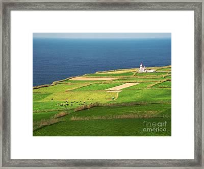 Pastures And Lighthouse Framed Print by Gaspar Avila
